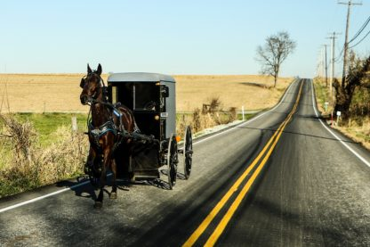 picture of Lancaster PA scenery/road with horse and buggy traveling down the road