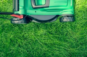 pic of mower mowing lawn