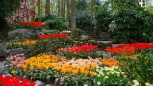Longwood Garden